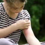 Feuille Aloe vera anti-inflammatoire agent cicatrisant
